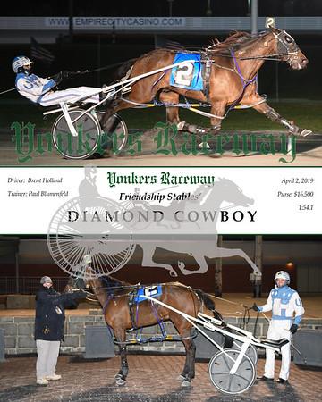 20190402 Race 6-Diamond Cowboy