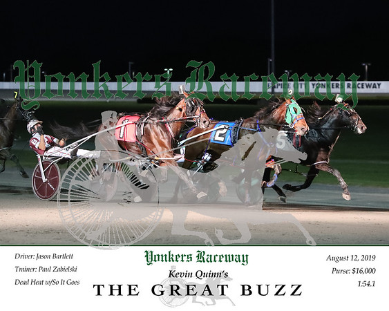 20190812 Race 5- The Great Buzz N