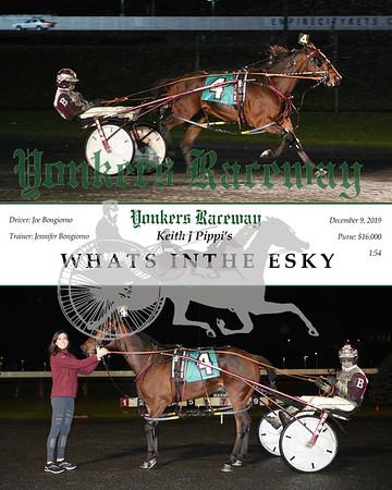 20191209 Race 7- whats inthe esky a