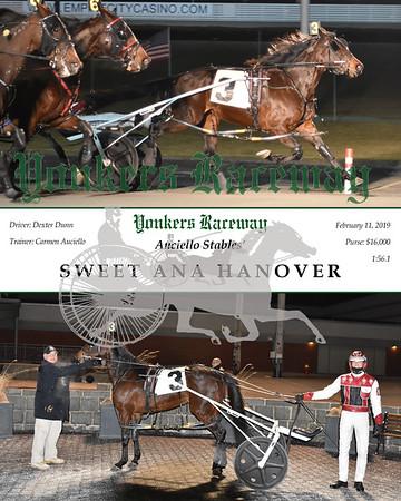20190211 Race 3-Sweet Ana Hanover