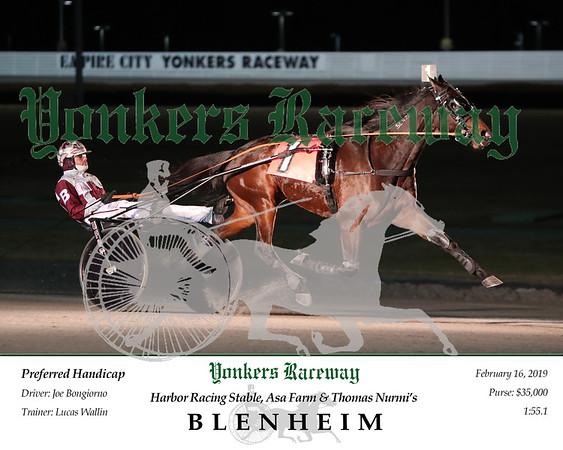 20190216 Race 2- Blenheim 2