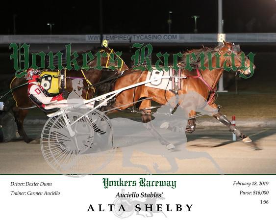 20190218 Race 6- Alta Shelby N 1