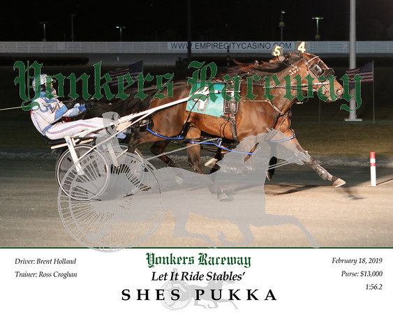 20190218 Race 1- Shes Pukka N 3
