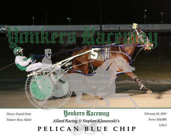 20190218 Race 5- Pelican Blue Chip 2