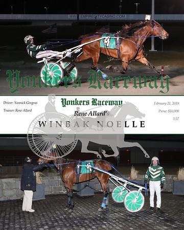 20190221 Race 2- Winbak Noelle