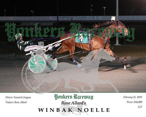 20190221 Race 2- Winbak Noelle 2