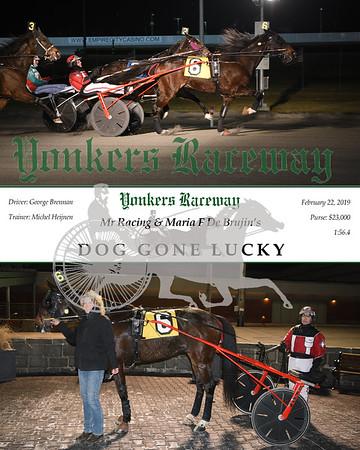 20190222 Race 2- Dog Gone Lucky