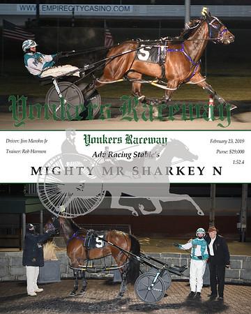 20190223 Race 7-Mighty Mr Sharkey N