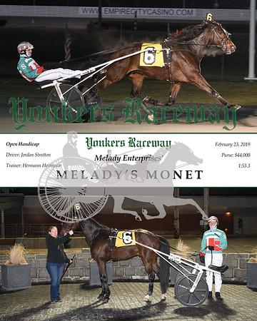 20190223 Race 6-Melady's Monet