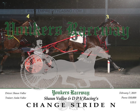 20190207 Race 3- Change Stride N 2