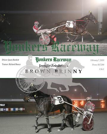 20190207 Race 7- Brown Brinny