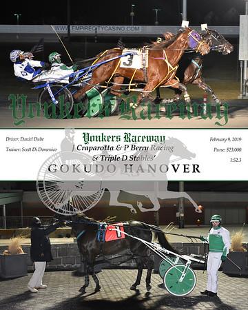 20190209 Race 3-Gokudo Hanover