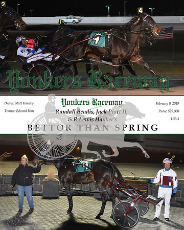 20190209 Race 11-Bettor Than Spring