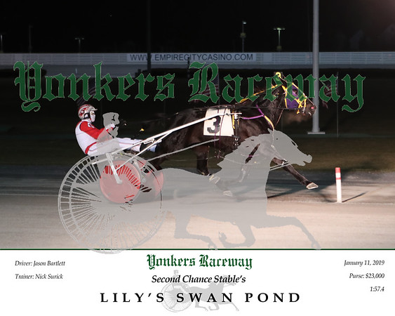 20190111 Race 2- Lily's Swan Pond 2