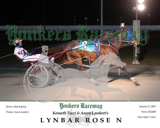 20190111 Race 5- Lynbar Rose N 4