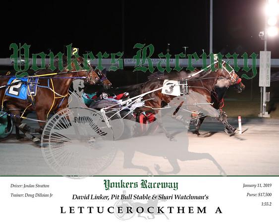 20190111 Race 3- Lettucerockthem A 4