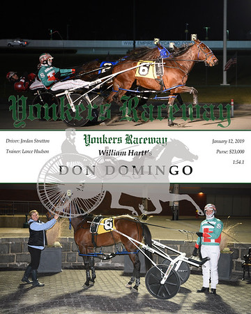 20190112 Race 4- Don Domingo N