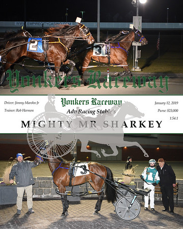 20190112 Race 9- Mighty Mr Sharkey N