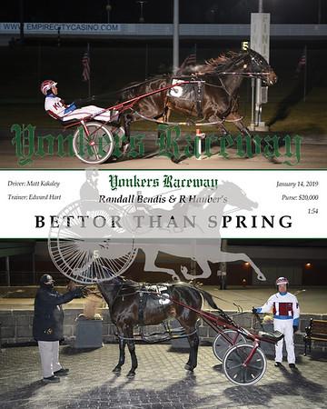 20190114 Race 8- Bettor Than Spring