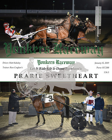 20190115 Race 8- Prarie Sweetheart