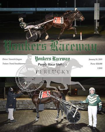 20190124 Race 7- Perlucky