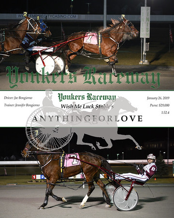 20190126 Race 11- Anythingforlove