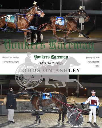 20190128 Race 6- Odds On Ashley