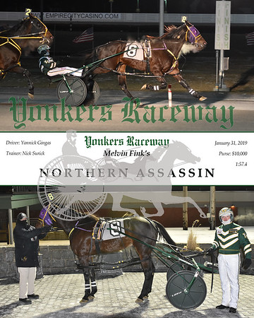 20190131 Race 1- Northern Assassin