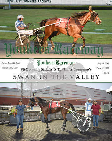 20190718 Race 4-Swan In The Valley