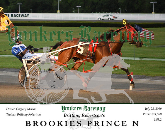 20190723 Race 1- Brookies Prince N