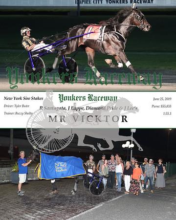 20190625 Race 6- Mr Vicktor