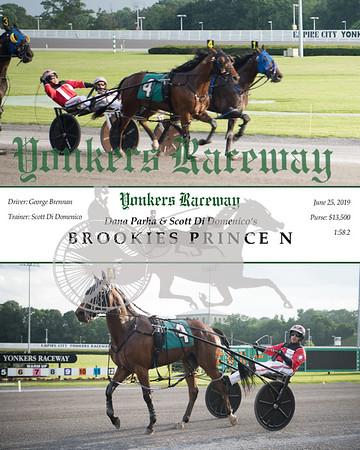 20190625 Race 1- Brookies Prince N