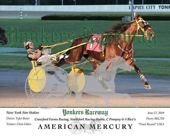 20190627 Race 5- American Mercury 2