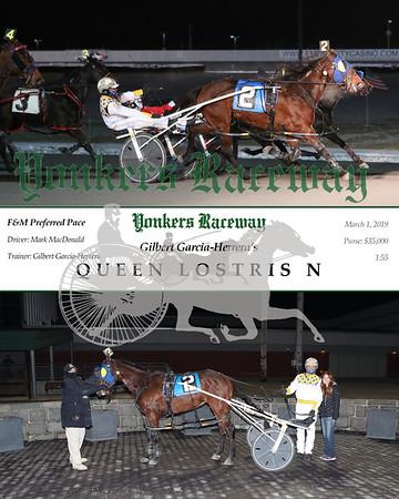 20190301 Race 6- Queen Lostris N 2