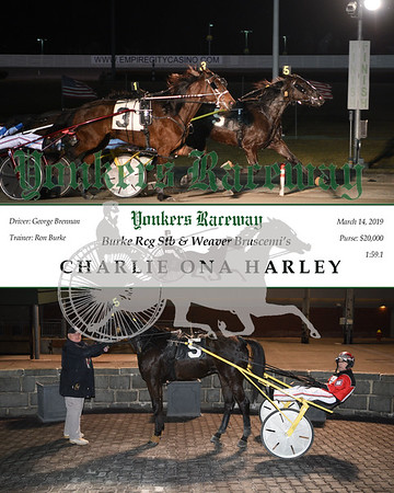 20190314 Race 4- Charlie Ona Harley