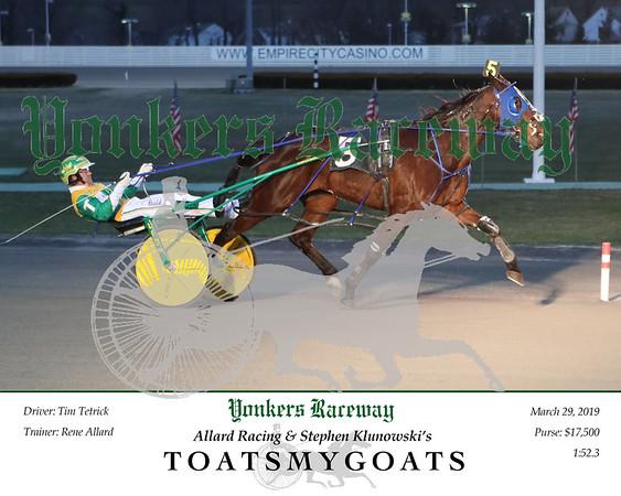 20190329 Race 1- Toatsmygoats 2
