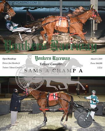 20190309 Race 6-Sams A Champ A