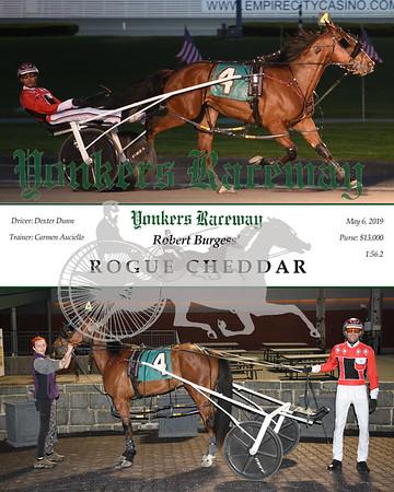 20190506 Race 4 -Rogue Cheddar