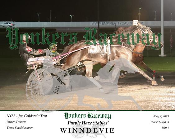 20190507 Race 7- Winndevie 2