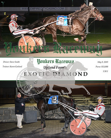 20190509 Race 5-Exotic Diamond