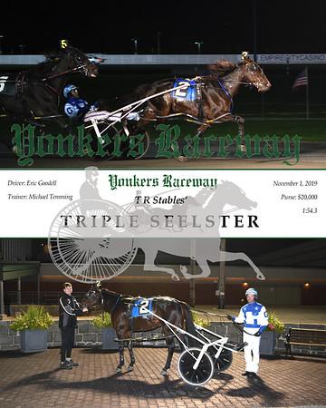 20191101 Race 3- triple seelster
