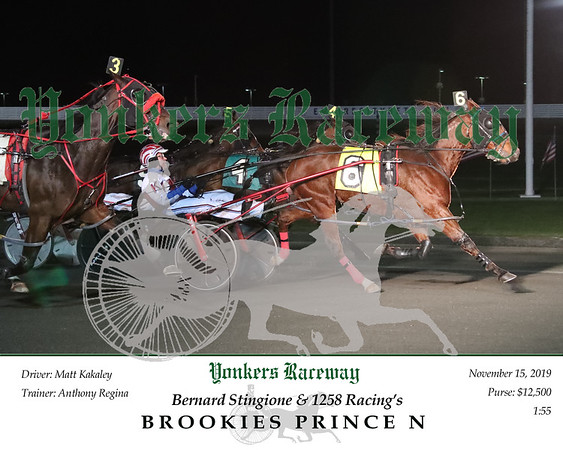 20191115 Race 1- Brookies Prince N