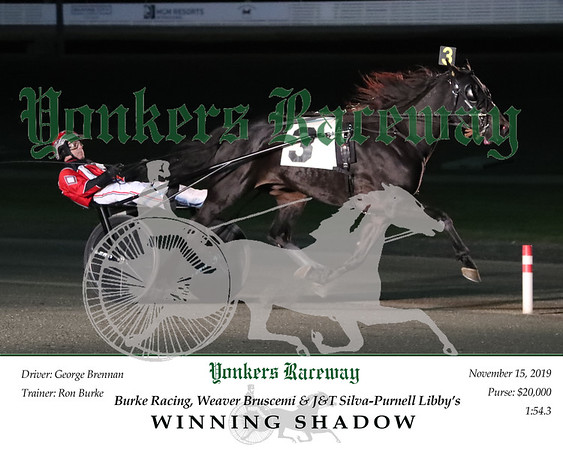 20191115 Race 2- Winning Shadow