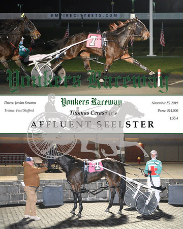 20191125 Race 1- Affluent Seelster
