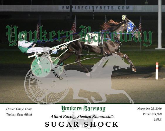 20191125 Race 3- Sugar Shock 2