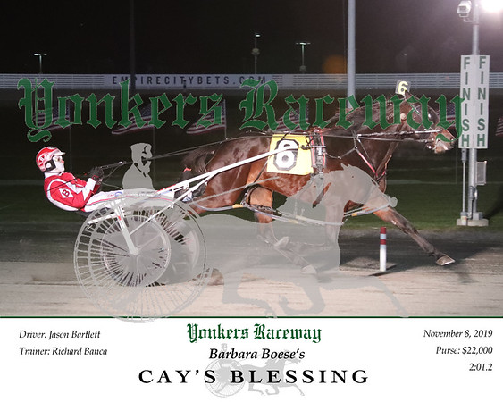 20191108 Race 8- Cay's Blessing 2