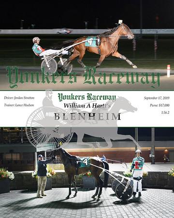 20190917 Race 5- Blenheim