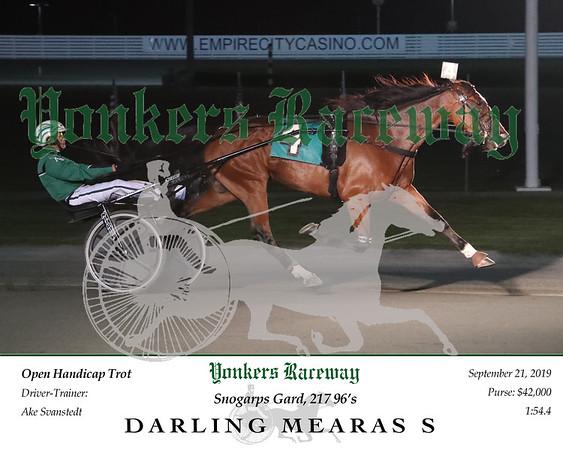 20190921 Race 6- Darling Mearas S 2