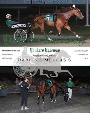 20190921 Race 6- Darling Mearas S