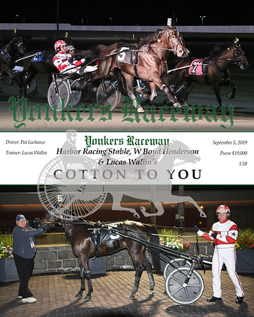 09052019 Race 7- cotton to you